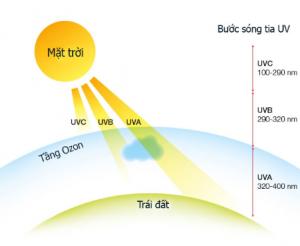 Tiếp xúc với tia UV và môi trường ô nhiễm