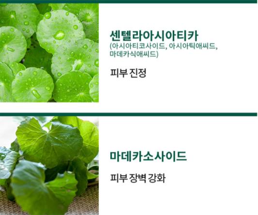 thanh-phan-Missha-Cicadin-pH-Blemish-Bubble-Foam-Cleanser