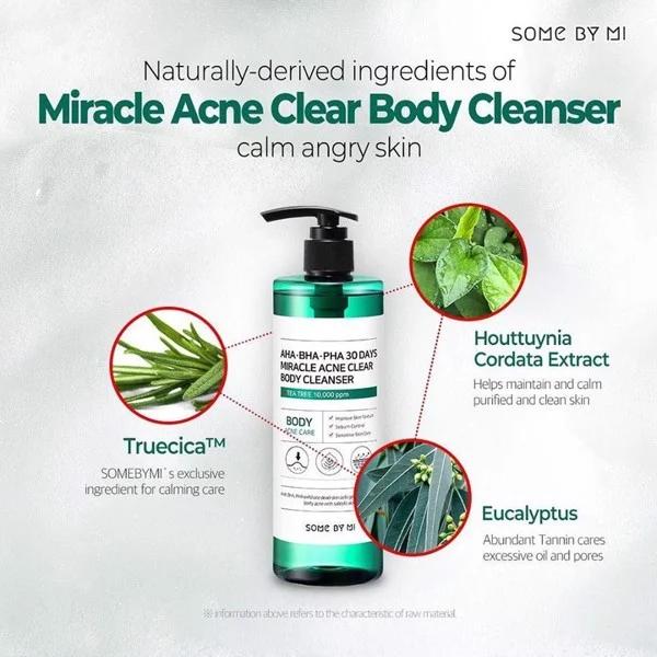 Thành phần Sữa Tắm SOME BY MI AHA-BHA-PHA 30 Days Miracle Acne Clear Body Cleanser